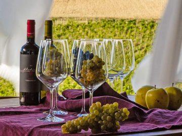 Filodivino: vino biologico, così come deve essere