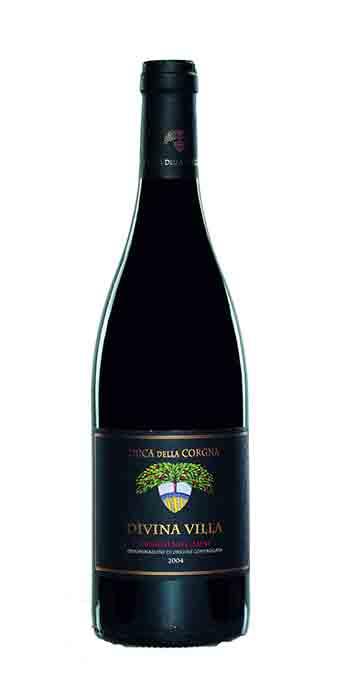 Trasimeno Gamay Divina Villa Riserva 2012 Duca della Corgna - Wine il vino