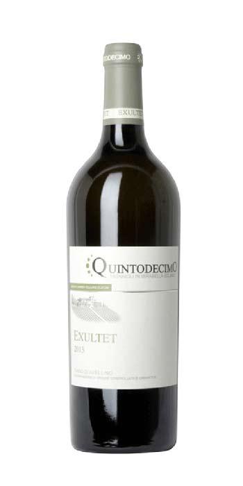 Fiano d'Avellino Exultet 2016 Quintodecimo white wine - Wine il vino