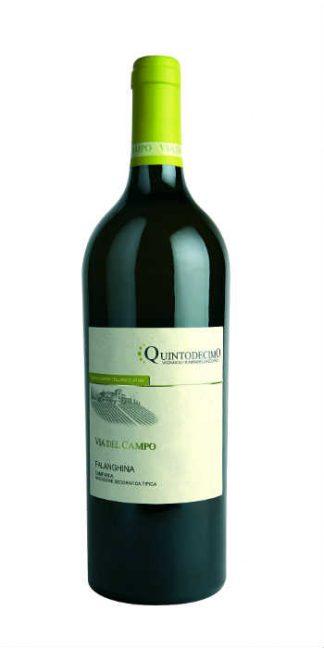 Irpinia Falanghina Via del Campo 2015 Quintodecimo - Wine il vino