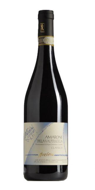Amarone della Valpolicella Classico Moropio 2012 Antolini - Wine il vino