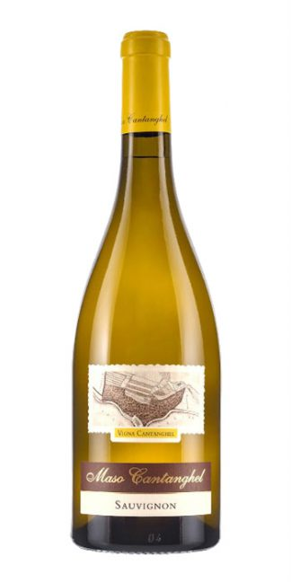 Trentino Sauvignon 2015 Maso Cantanghel - Wine il vino