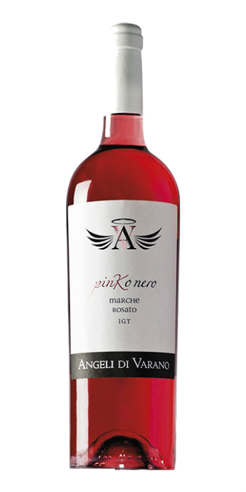 Marche Rosato Pinko Nero 2015 Angeli di Varano - Wine il vino