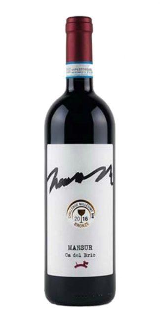 Barbera del Monferrato Mansur 2014 Ca del Bric - Wine il vino