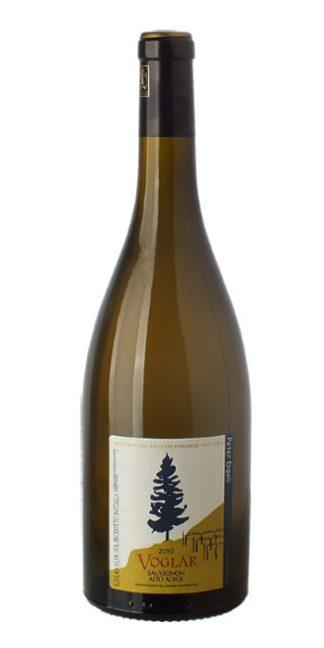 Alto Adige Sauvignon Voglar 2013 Di Poli - Wine il vino