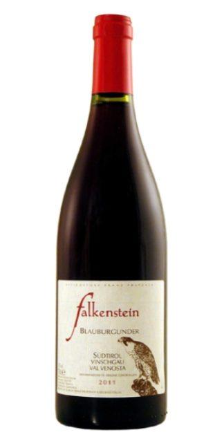 vendita vini on line pinot nero falkenstein - Wine il vino