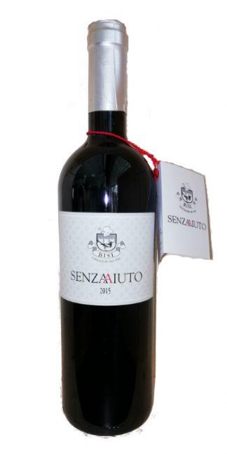 Provincia di Pavia Barbera SenzAAiuto 2015 Bisi - Wine il vino