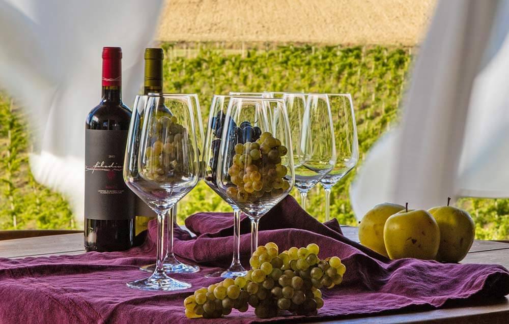 Vendita vino online filodivino