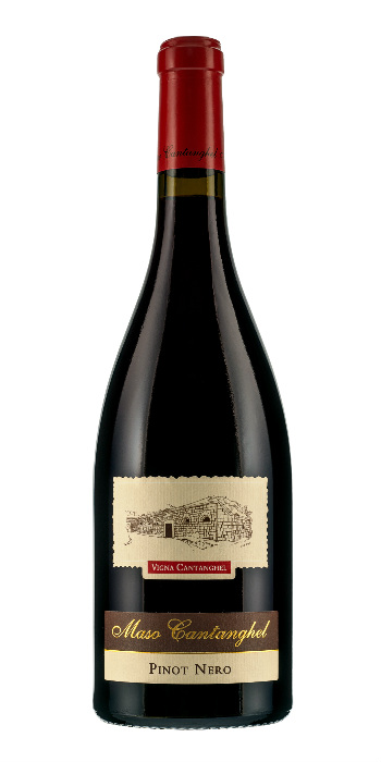 Trentino Pinot Nero 2013 Maso Cantanghel - Wine il vino