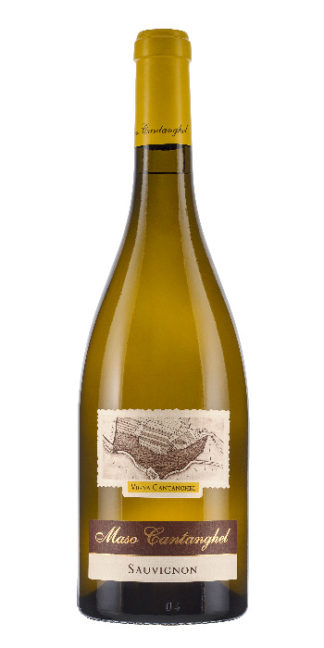 Trentino Sauvignon Vigna Cantanghel 2016 Maso Cantanghel - Wine il vino