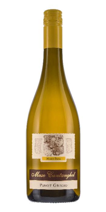 Dolomiti Pinot Grigio Maso Papa 2017 Maso Cantanghel - Wine il vino