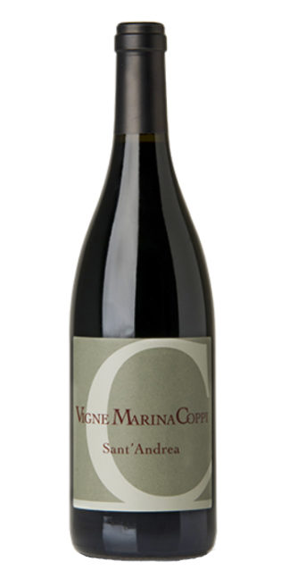 vendita vino on line barbera santandrea vigne marina coppi - Wine il vino