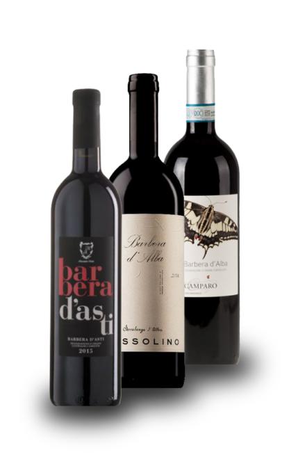 Tra Asti e Alba: tre diverse declinazioni di barbera. - Wine il vino