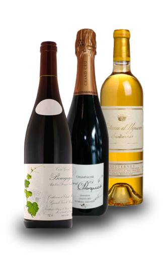 Speciale Francia: Tre diversi vini, dalle tre zone più prestigiose. - Wine il vino