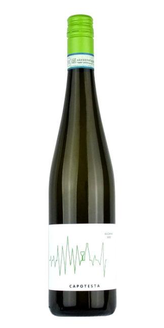 vendita vino online lugana capotesta cascina maddalena - Wine il vino