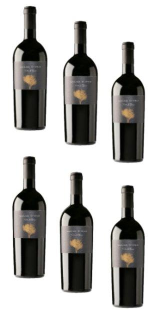 vendita vini on line 6 Bottiglie-Nero-di-Troia-Gelso-d'Oro-podere29 - Wine il vino