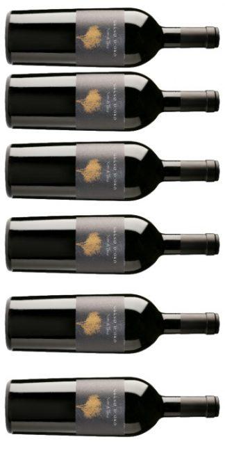 vendita vini on line Nero-di-Troia-Gelso-d'Oro-2017-6-b-podere29 - Wine il vino