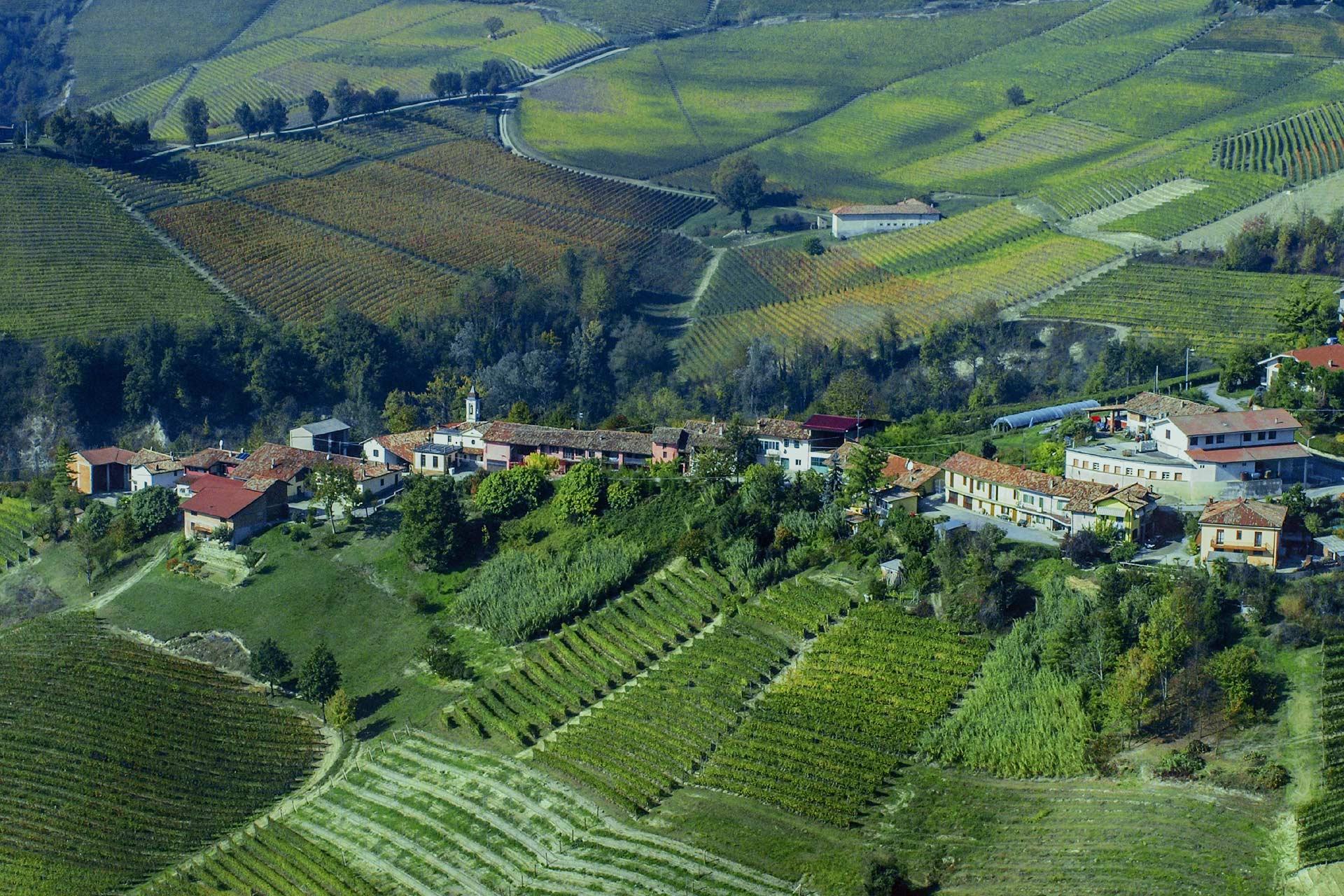 Vendita vini on line Raineri azienda