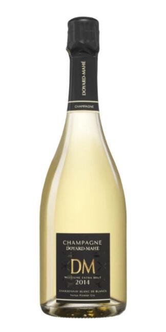 vendita vini on line champagne-millesime-extra-brut-doyard-mahe - Wine il vino